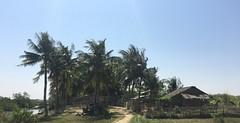 Myanmar, Yangon Region, Southern District, Kungyangon Township, Ka Nyin Kone Village Tract, Ah Let Village (Die Welt, wie ich sie vorfand) Tags: myanmar burma bicycle cycling bike yangonregion yangon rangoon southerndistrict kungyangontownship kungyangon kanyinkone ahlet ahlel