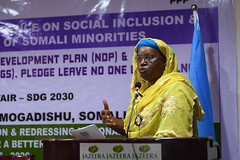 2017_03_28_Social_Inclusion_Conference-12