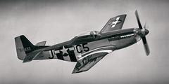 "north american p-51d mustang (Matt ""Linus"" Ottosen) Tags: northamerican north american p51d p51 mustang ladyalice planesoffame planes fame airshow cno kcno nikon d7000 2016"
