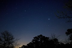 Night Sky with Jupiter over Wharton State Forest, NJ (Douglas Heusser Photography) Tags: astronomy jupiter planets 14mm lens rokinon photography canon jersey new barrens pine forest state wharton starry exposure long sky night
