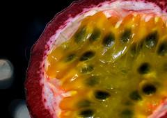 Macro Mondays - Seeds (PaulE1959) Tags: macromondaysseeds macromondays seeds passionfruit fruit food deliscious nature edible yellow red black bokeh nikon d5200