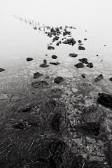 Mist (fredf34) Tags: mist brouillard brume nb bw noiretblanc blackandwhite rocs rochers thau étangdethau étang pond marseillan pentax k3 pentaxk3 fredf34 fredfu34 minimalist minimaliste landscape minimalisme contrejour sète lumière hdpentaxda1685mmf3556eddcwr sky sun fog graphique thauabstrait black white