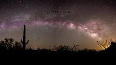 Milky Way April 2017 (Terry L Richmond) Tags: milkyway night nightsky nightscape longexposure panorama stars desert arizona cactus canon6d canon1740