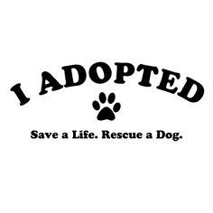 I ADOPTED (dflmanagement) Tags: dog rescue cat animal pet shelter adopt breeder