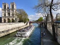 Sunny sunday at Notre-Dame (Patnrita) Tags: cathedral îledelacité bateau sunny boat paris notredame notredamedeparis france seine