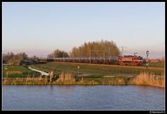 CT 1619 - 47705 (Spoorpunt.nl) Tags: 2 april 2017 captrain 1619 47705 hogebrug ketel wagens zacns ethanol rongen res