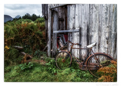 Tyred Out (don't count the pixels) Tags: bike bicycle scotland glenetive shed decay glencoe ngc rusty rustyandcrusty