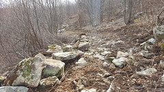 Off-road vehicle trail construction (Maryland DNR) Tags: 2017 offroadvehicletrail orv construction savageriver stateforest