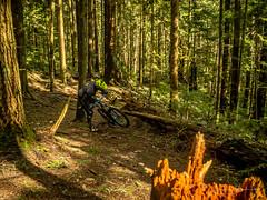 Too flash and you crash! (kendyck1) Tags: fil fromme mountainbike mountainbiking spring sebastien snowbiking