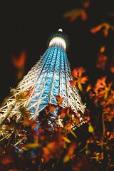 Tokyo Skytree (Thomas Ohlsson Photography) Tags: flowers fujixt1 fujinonxf18mmf2r hightower japan samurairun2017 tokyo tokyoskytree thomasohlssoncom