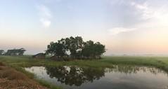 Myanmar, Yangon Region, Southern District, Twantay Township, Ma Wun Village Tract (Die Welt, wie ich sie vorfand) Tags: myanmar burma bicycle cycling bike yangonregion yangon rangoon southerndistrict twantaytownship twantay mawun
