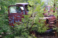 IMG_2685 (Irina Souiki) Tags: rusty crusty cars mcleansautowreckers milton ontario old oldcars