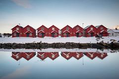 Reflecting cottages, Norway (Sunny Herzinger) Tags: norway fujixpro2 cottage winter norge house lofoten february ballstad sunset reflection red nordland no
