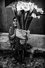 Guatemala 19.2.17 (krishudds) Tags: x100t flowerseller travelphotography woman guatemalacity streetphotography flowers documentaryphotography fuji