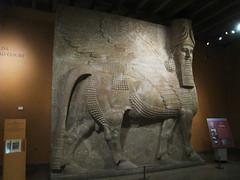 Oriential Institute, Chicago IL (Boston Runner) Tags: oriential institute museum chicago illinois yelda khorsabad court gallery assyria winged bull lamassu king sargon mesopotamia