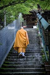 Miyajima Monk (60mls) Tags: stairs monk miyajima travel street budhist island buddhist orange japan