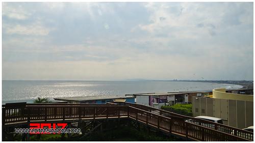 新江之島水族館48.jpg