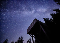 Night sky with the Milky Way over the forest and a bird-watching tower. Trees surrounding the scene (Digikuvaaja) Tags: abstract astrology astronomy astronomical astrophotography celestial black blue background breathtaking constellation cosmos dark earth galaxy field exposure interstellar long milky photograph night nebula real science stardust space sky starry stars way universe atmosphere cosmic infinite deep colorful milkyway nature wallpaper starfield outerspace spectacular darkness nightsky infinity backdrop stellar majestic