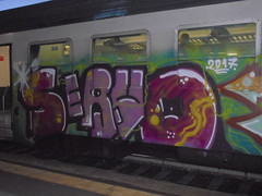 107 (en-ri) Tags: servo verde viola lilla train torino graffiti writing 2017