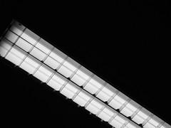 White sequence (Lívia.Monteiro) Tags: light sequence white black pb interior