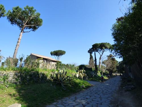 Rome - via appia antica (3)
