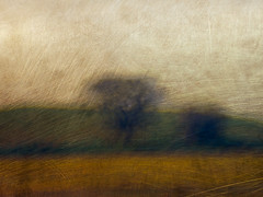 P1017544 (ICM Only) Tags: landscape blur abstract intentionalcameramovement icm trees