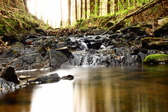 Serenity (Wim van der Zwaluw) Tags: stream brook river water germany eifel forest woods sunlight nature natuur bos zonlicht green groen rocks beek beekje duitsland creek