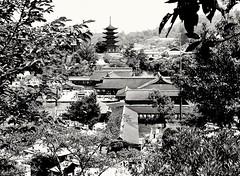 Itsukushima-jinja, Miyajima, Japan (Gonzalo Aja) Tags: itsukishima miyajima japan hiroshima temple shrine templo pagoda island isla trees arboles buildings edificios architecture arquitectura japon sintoismo shintoism blackandwhite blancoynegro bw nature naturaleza landscape paisaje