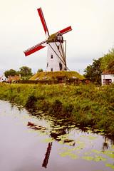 Landscape. (ost_jean) Tags: nikon d5200 tamron sp af 1750mm f28 xr di ii vc ld ostjean belgium belgie europe belgique damme landschap paysage landscape