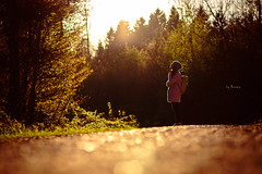 there's something in the air.... (_andrea-) Tags: lowpov beautifulshot light licht air wood evening sonyalpha7mii 50mm water me magical