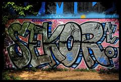 XT1S2118_tonemapped (jmriem) Tags: jmriem colombes 2017 graffiti graffs graff street art