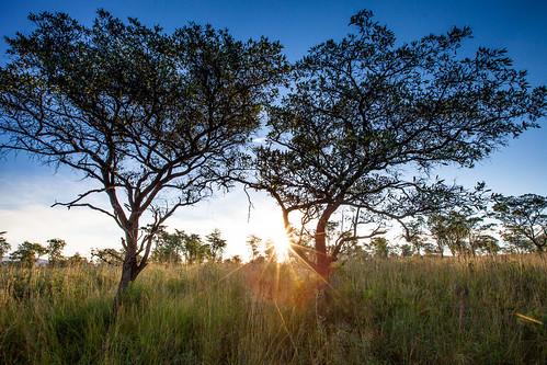 KrugerParkREIZ&HIGHRES-71