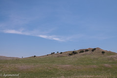 Badlands National Park-8623 (hpimentel2010) Tags: southdakota mountrushmore rapidcity badlandsnationalpark crazyhorse custernationalpark spring2013