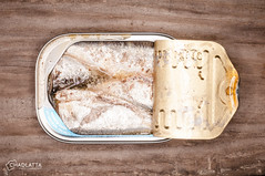 Sardines (chad.latta) Tags: stilllife fish cooking dinner lunch outdoors tin chad flash can fresh ring canned seafood sardine sardines ringflash latta pisce
