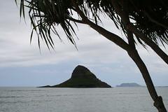 IMG_13742 (mudsharkalex) Tags: hawaii oahu kaneohe chinamanshat mokolii mokoliiisland kualoaregionalpark mokolii kneohe kaneohehi mokoliiisland kneohehi