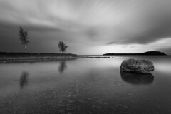 Birches and a boulder (- David Olsson -) Tags: longexposure blackandwhite bw lake reflection nature water monochrome rock clouds reflections landscape mono nikon cloudy sweden outdoor stones may pebbles boulder le mirrored birch grayscale fx vnern birches clearwater d800 hammar vrmland 1635 ndfilter blackglass 1635mm lakescape smoothwater skoghall 2013 flickroid lenr mrudden davidolsson nd500 lightcraftworkshop 1635vr