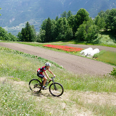 20130623-randonne-bike-147.jpg (joakim.faiss - bikinvalais.ch) Tags: bike switzerland suisse mountainbike vtt vélo valais fully randonne cyclisme vhiboz