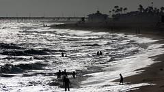 DSC08039 (palmtreeman) Tags: sunset sea seascape beach sports water weather birds boats surf waves surfing beaches wedge bodyboarding bodysurf skimming bodysurfing