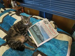 """Kiki Reading Gypsy Journal • <a style=""""font-size:0.8em;"""" href=""""https://www.flickr.com/photos/36701684@N02/9306683403/"""" target=""""_blank"""">View on Flickr</a>"""