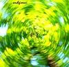 mi gira la testa (archgionni) Tags: trees sky game verde green nature leaves foglie turn circle centro natura center cielo albero cerchio gioco ruotare allxpressus