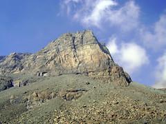 yerba loca (eL Lero) Tags: chile santiago naturaleza nature landscapes yerba estero loca cordillera