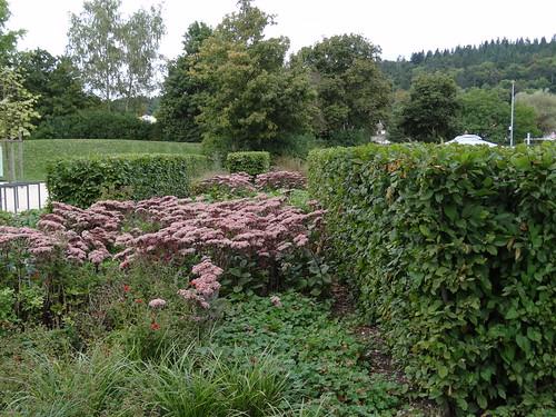 Gartenschau - Sigmaringen