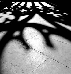Gothic Thoughts (Christine Bloom) Tags: flowers white black reflections spain nikon shadows cathedral gothic arches seu forms cloister vella lleida d5000