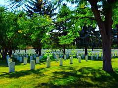 Resting in Peace (Sandra Leidholdt) Tags: nationalcemeteries american us fortlogan usa america graves marble tombstones fortlogannationalcemetery unitedstates rip cemetery sandraleidholdt military armedservice militarycemeteries tree denver colorado