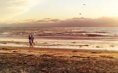 clouds & weather (beryl) Tags: ocean autumn seaweed beach wet clouds sand afternoon cloudy tide horizon runners joggers encinitas nikond600