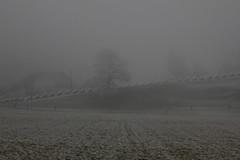Panzersperre - Gelndepanzerhindernis der Sperre Marfeldingen aus dem zweiten Weltkrieg im Tal der S.aane bei Marfeldingen im Kanton Bern in der Schweiz (chrchr_75) Tags: world schnee winter snow fog schweiz switzerland war nebel suisse swiss second christoph dezember svizzera nebbia niebla brouillard zweiter weltkrieg suissa kleines sperre chrigu neblig stachelschwein 1312 2013 kantonbern chrchr hurni chrchr75 nebeltag chriguhurni chriguhurnibluemailch dezember2013 sperrstelle sperremarfeldingen sperrstellemarfeldingen albumnebelinderschweiz hurni131213