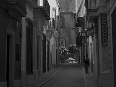 Jerez (campese) Tags: espaa spain wine seville andalucia cadiz sherry andalusia cdiz bodegas flamenco chiclana alcazaba tarifa jerez conil arcos sanlcar barbate costadelaluz sanlucar zubaran jerezdelafrontera bornos catedraldesansalvador zurbarn puertreal