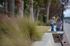 Mommy Helping Everett On The Wall (Joe Shlabotnik) Tags: blurry southcarolina sue beaufort everett faved proudparents 2013 december2013