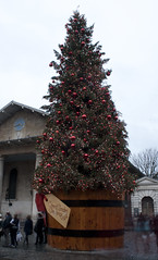 Covent Garden Christmas Tree (mark_fr) Tags: london apple garden view cola market circus piccadilly covent shard coca