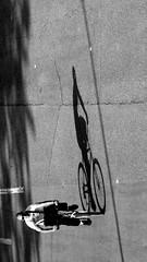 (Badilù) Tags: street city light shadow urban bw italy white black rome roma bike bicycle canon strada italia ombra bn bici bianco nero luce ciclabile bicicletta stphotographia